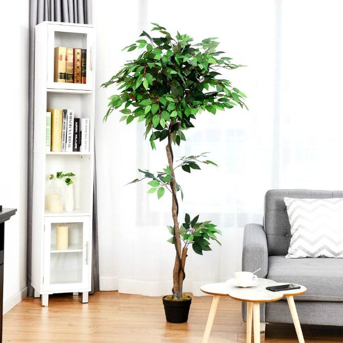 unusual-home-decor